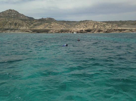 Eco Adventures: Snorkeling at Cabo Pulmo