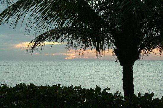 Las Rocas Resort & Dive Center: Sunset from Resort