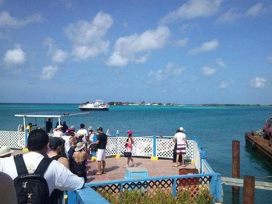 De Palm Island: Antes de la lancha