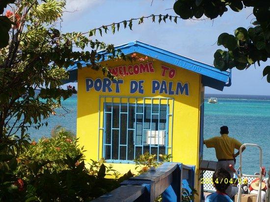 De Palm Island: Antes de salir