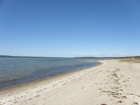 Laulasmaa Side Holiday Centre: The beach on the Gulf of Finland a 500 meters walk