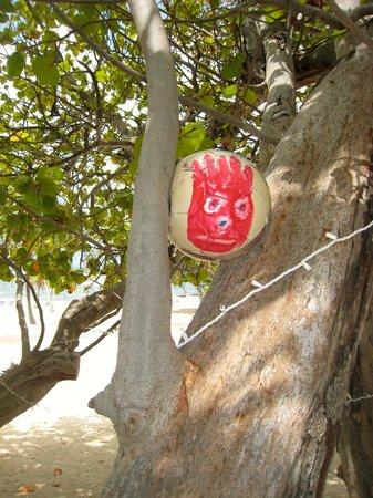 Cayman Brac Beach Resort: Wilson?