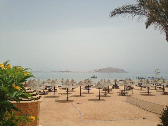 Jaz Belvedere: пляж