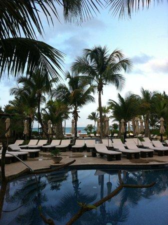 La Jolla Cove Hotel & Suites: Amazing poolside view