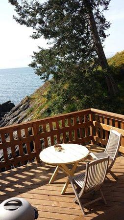 Eagle Cove Beachfront Guest Suites: Goog view!