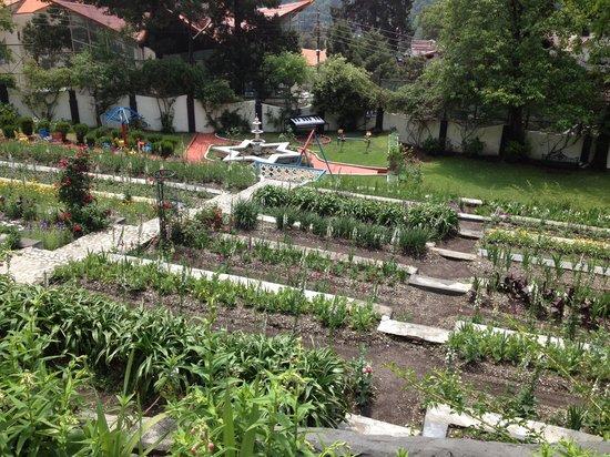 Shervani Hilltop: Beautiful Well Maintained Garden
