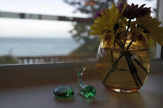 Eagle Cove Beachfront Guest Suites : Settings