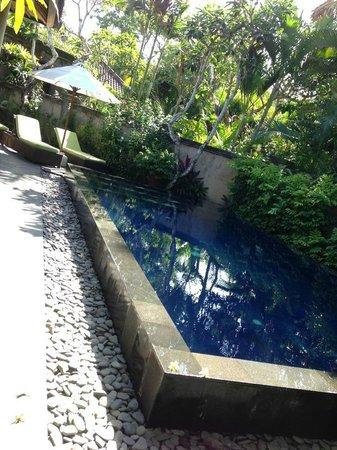 Kamuela Villas and Suite Sanur: pool in e villa