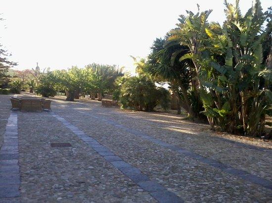 "Azienda Agricola Mandranova: Le jardin ""tropical"""
