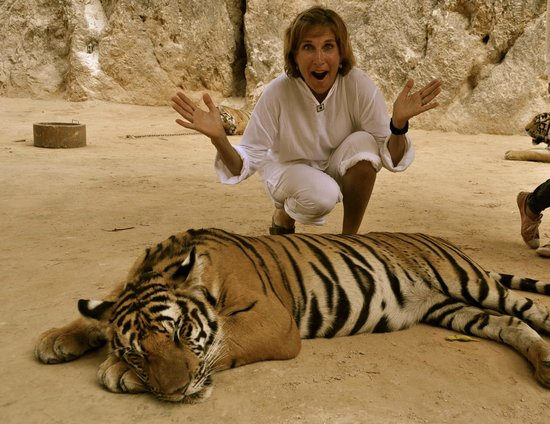 Tiger Temple ( Wat Pa luang Ta Bua) : What the hell am I doing????