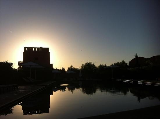 Adama Resort: coucher de soleil au bord de la piscine