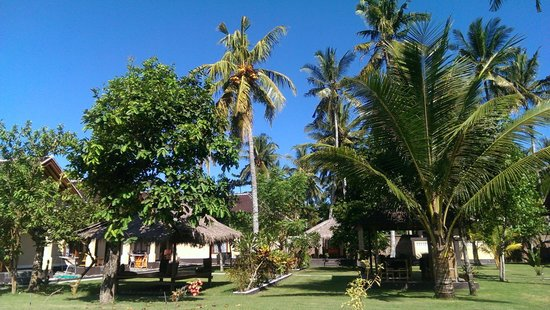 Yuli's Homestay: Modest view in the area