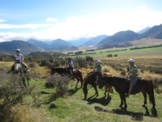 """Grasmere Lodge : View from atop """"my"""" horse while riding"""