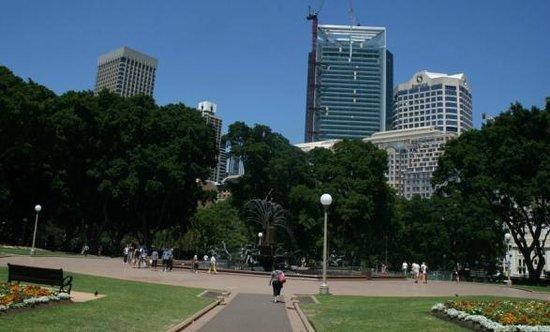 Sheraton on the Park, Sydney: вид из парка
