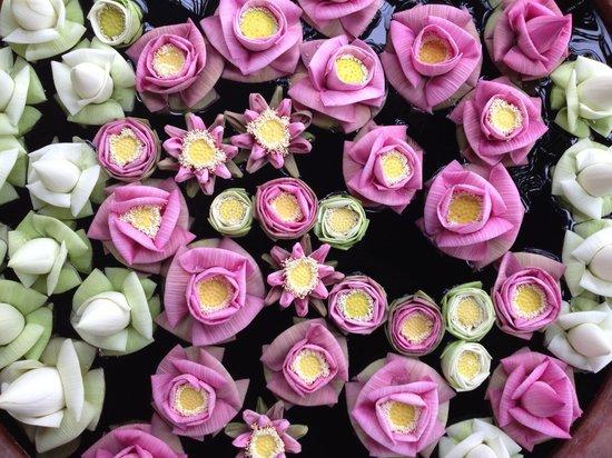 Shinta Mani Shack: Beautiful flowers everywhere