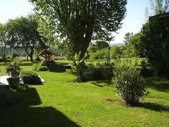 Gite Hias : Jardin arboré