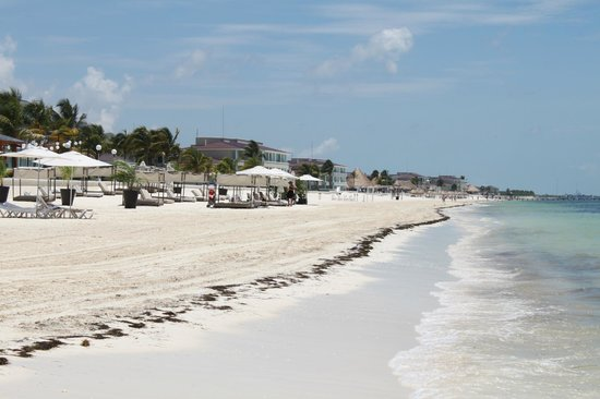 Moon Palace Cancun: massive beach