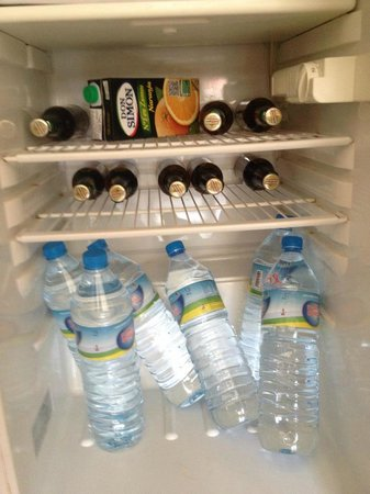 HM Martinique: Well stocked fridge....