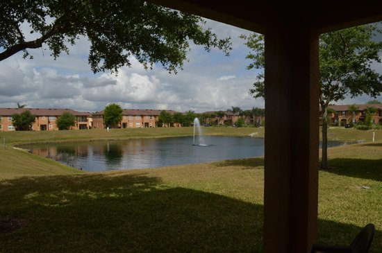 Regal Palms Resort & Spa: The view outside our house