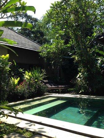 Tri Sandhya Villa : プール