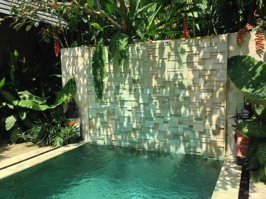 Tri Sandhya Villa: プール