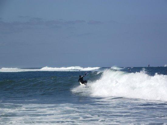 Hotel Olé Tropical: surfing - playa las americas