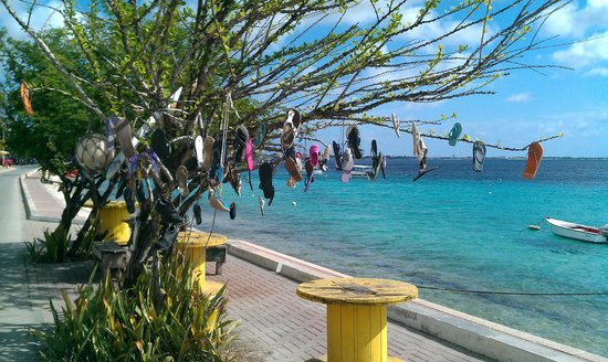 Caribbean Club Bonaire: Begin van de boulevard