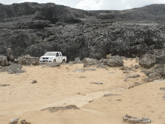 Caribbean Club Bonaire: Vlak voor Washington Slagbaai National Park