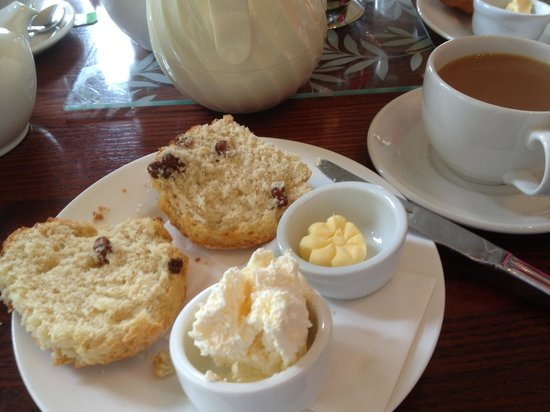 Howick Hall Gardens: Delicious scones