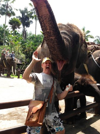 Amadea Resort & Villas: Ken smiles with the Elephants At Ubud