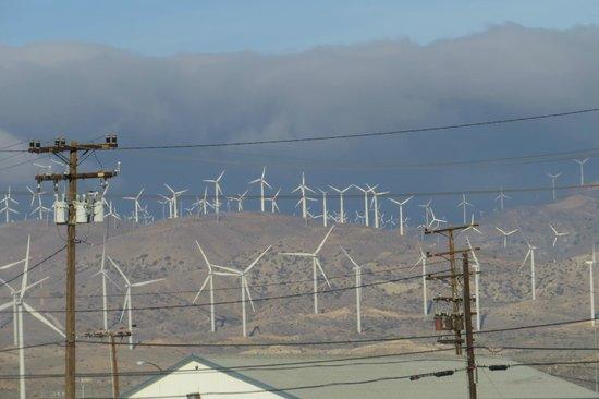 Best Western Desert Winds: View across road from BWDW