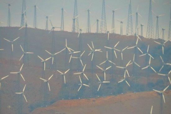 Best Western Desert Winds: Lots of Wind
