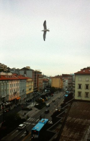 Victoria Hotel Letterario: view from room 402