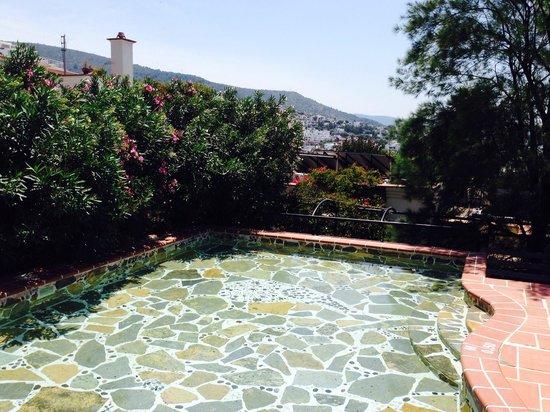 El Vino Hotel & Suites : Roof top pool