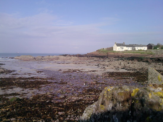 Rosehill Farm Bed and Breakfast: St Bride's bay. Other beaches include Marloes, Broad Haven, Newgale for Surfing, Fresh Water Eas
