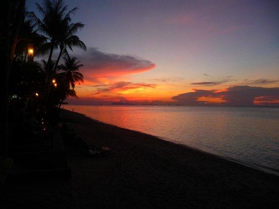 By Beach Resort: plage