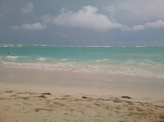 Vista Sol Punta Cana : Наш чудесный пляж