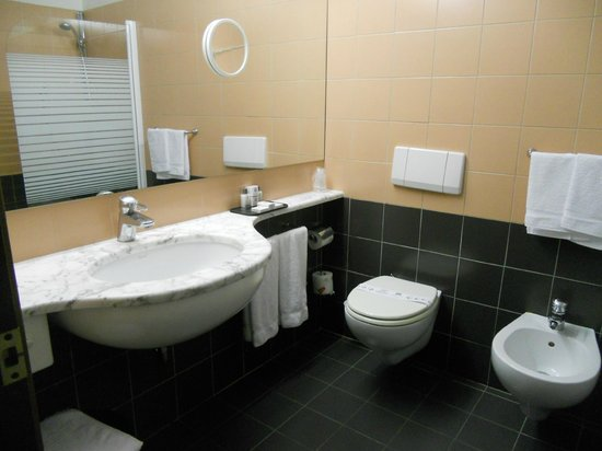 Albornoz Palace Hotel : bagno