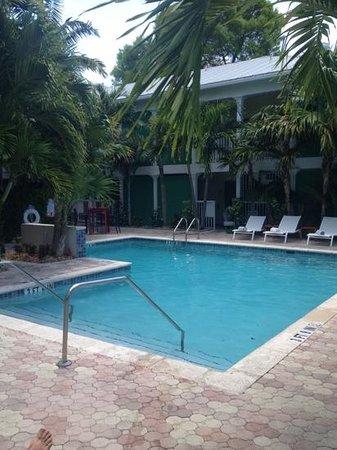 Almond Tree Inn : pool area.
