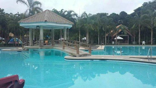 Pinele Island Resort Pic8