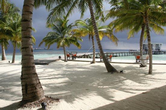 Jumeirah Dhevanafushi : Insel