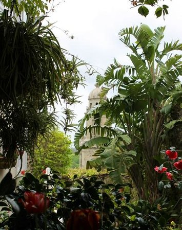 Costa Vella Hotel : garden