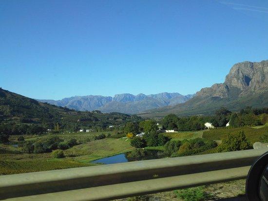 Alluvia Wine Estate: View from the road