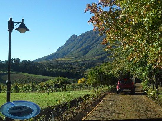 Alluvia Wine Estate: Service road to Alluvia