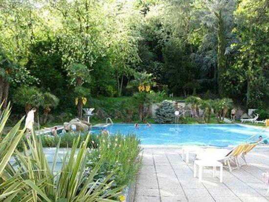Millepini Terme Hotel: Hotel terme millepini- piscina termale nel parco
