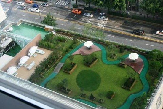 Lotte Hotel Seoul: вид на бассейн