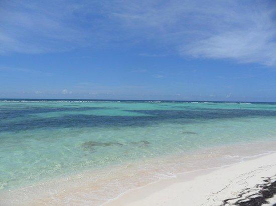 Viva Wyndham Dominicus Beach: SPIAGGIA3