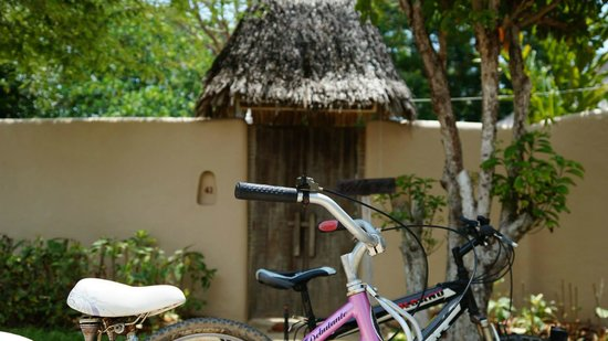 The Naka Island, A Luxury Collection Resort & Spa Phuket : The bikes outside our villa