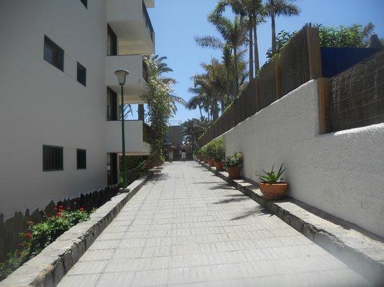 Apartamentos El Palmar: side