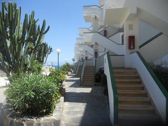 Apartamentos El Palmar: back